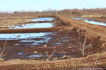 Neu mit Wällen zur Wasserrückhaltung versehene Fläche im Aschhorner Moor.
